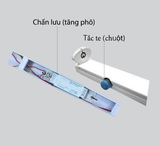 tang-chuot-den-huynh-quang