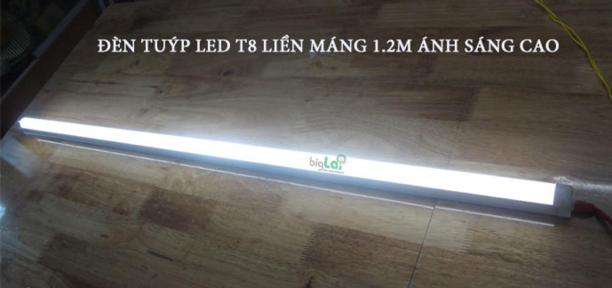 den-tuyp-led-t8-lien-mang-1.2m-24w-biglai
