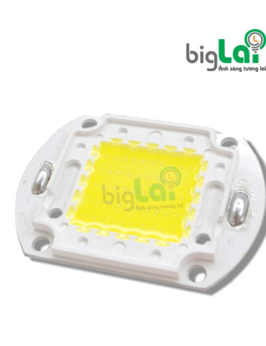 CHIP-LED-50w-Biglai