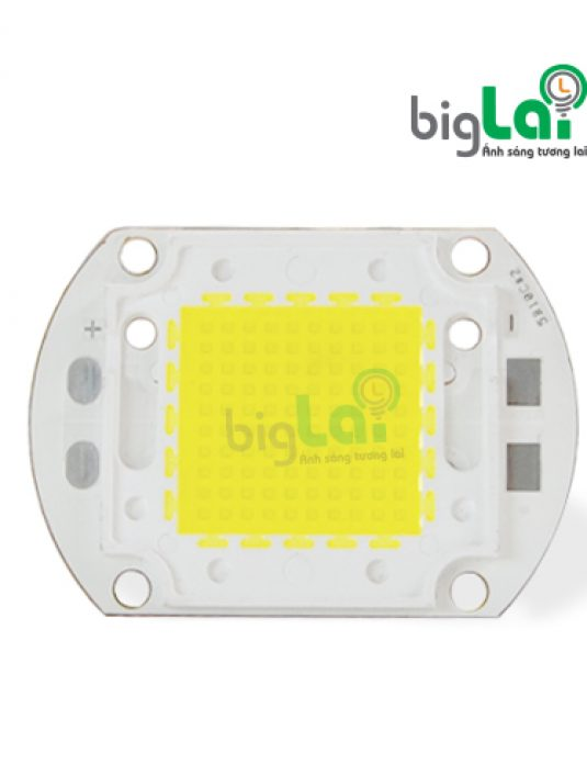 CHIP-LED-COB-100W
